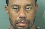 Tiger Arrested For DUI In Florida
